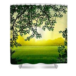 Misty Morning Shower Curtain by Bedros Awak
