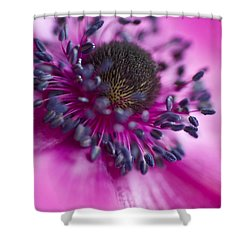 Mixed Emotions Shower Curtain by Jan Bickerton