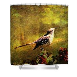 Mockingbird Have You Heard... Shower Curtain by Lianne Schneider