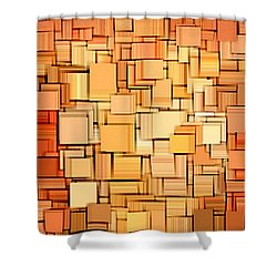 Modern Abstract Xvi Shower Curtain by Lourry Legarde