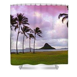 Mokolii Palms Shower Curtain by Sean Davey