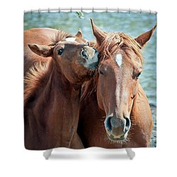 Mommy And Me Shower Curtain by Athena Mckinzie