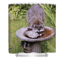 Mommy Can You See Me? Shower Curtain by Kym Backland