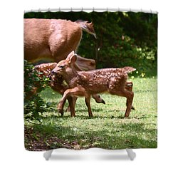 Mommy Is Here Time To Run Shower Curtain by Kym Backland