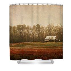 Moody Morning Stillness Shower Curtain by Paulette B Wright