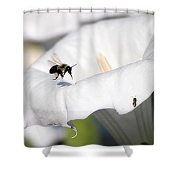 Moon Flower 3 Shower Curtain by Thomas Woolworth