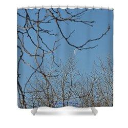 Moon On Treetop Shower Curtain by Sonali Gangane