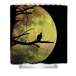 Moonlight Mile Shower Curtain by Bill Cannon