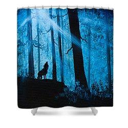 Moonlight Serenade Shower Curtain by C Steele