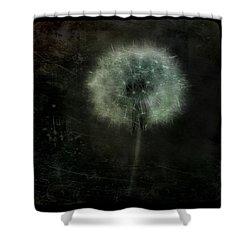 Moonlit Dandelion Shower Curtain by Gothicolors Donna