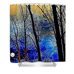 Moonlit Frosty Limbs Shower Curtain by Will Borden