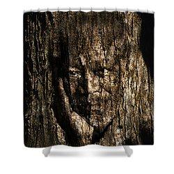 Morgan Freeman Roots Digital Painting Shower Curtain by Georgeta Blanaru