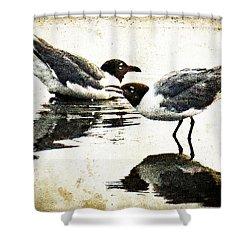 Morning Gulls - Seagull Art By Sharon Cummings Shower Curtain by Sharon Cummings