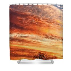 Morning Has Broken Shower Curtain by James BO  Insogna