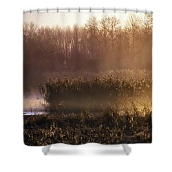 Morning Light Shower Curtain by Skip Willits