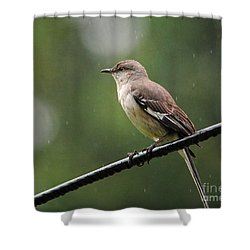Morning Shower Shower Curtain by Jai Johnson
