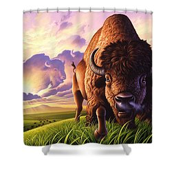 Morning Thunder Shower Curtain by Jerry LoFaro