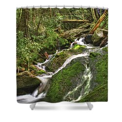 Mossy Creek Shower Curtain by Debra and Dave Vanderlaan