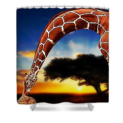 Mother And Child Shower Curtain by Jack Zulli