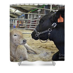 Mother And Child Hand Embroidery Shower Curtain by To-Tam Gerwe