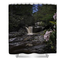 Mountain Laurel And Falls On Small Stream Shower Curtain by Dan Friend