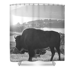 Mountain Wildlife Shower Curtain by Pixel  Chimp