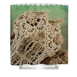 Mud Hive Shower Curtain by Kevin Trow