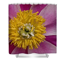 Mum Is The Word Shower Curtain by Susan Candelario