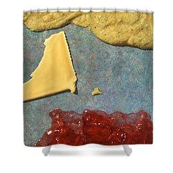 Mustard  Cheese Jam Shower Curtain by James W Johnson