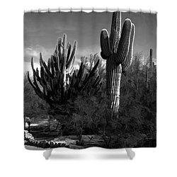 Mutt And Jeff Shower Curtain by Jon Burch Photography