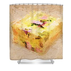 My Box Of Secrets Shower Curtain by Andee Design