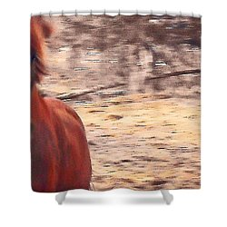 My Fine Friend The Flashy Chestnut Stallion Shower Curtain by Patricia Keller