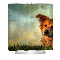 My Girl Shower Curtain by Darren Fisher