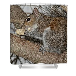 My Peanut Shower Curtain by Deborah Benoit