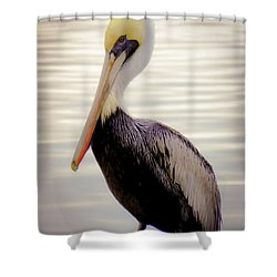 My Visitor Shower Curtain by Karen Wiles