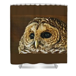 My What Big Eyes You Have Shower Curtain by Lois Bryan