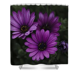 Mystical Purple Shower Curtain by Penny Lisowski