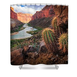 Nankoweap Cactus Shower Curtain by Inge Johnsson