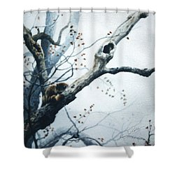 Nap In The Mist Shower Curtain by Hanne Lore Koehler