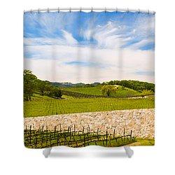 Napa Vineyard #2 Shower Curtain by Mick Burkey