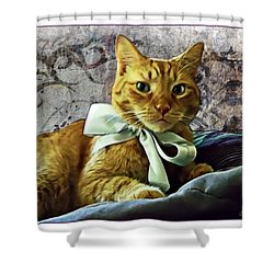 Napoleon And The Ribbon Shower Curtain by Joan  Minchak