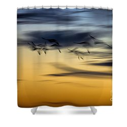 Natural Abstract Art Shower Curtain by Peggy Hughes