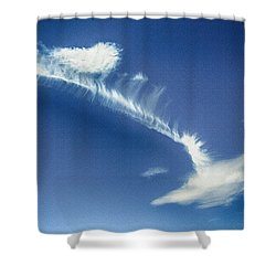 Natural Abstract Creations In Nature No 103 Shower Curtain by Bob and Nadine Johnston