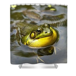 Nature Calling Shower Curtain by Christina Rollo