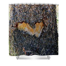 Nature Is In My Heart Shower Curtain by Fiona Kennard