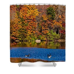 Natures Colorful Autumn Shower Curtain by Karol Livote