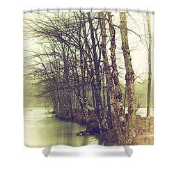 Natures Winter Slumber Shower Curtain by Karol Livote