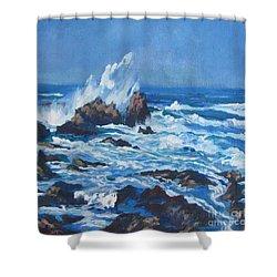 Near Pt. Joe Shower Curtain by Vanessa Hadady BFA MA