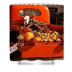 New Mexico Truck Shower Curtain by Jean Noren