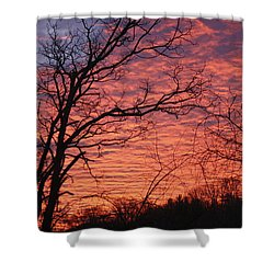 New Year Eve Sunrise Shower Curtain by Teresa Mucha